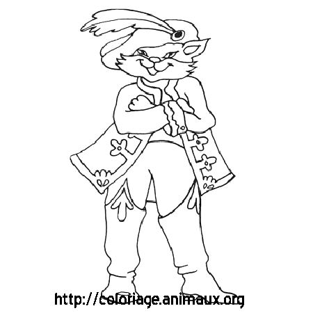 Coloriage Chat Pirate.Chat Pirate Coloriage Chat Pirate Sur Coloriage Animaux Org