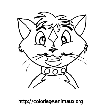 Chat tete coloriage chat tete sur coloriage animaux org - Tete de chat a colorier ...