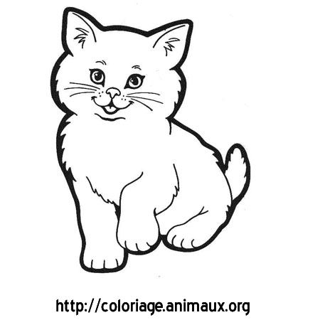 Chaton coloriage chaton sur coloriage animaux org - Tete de chat a colorier ...