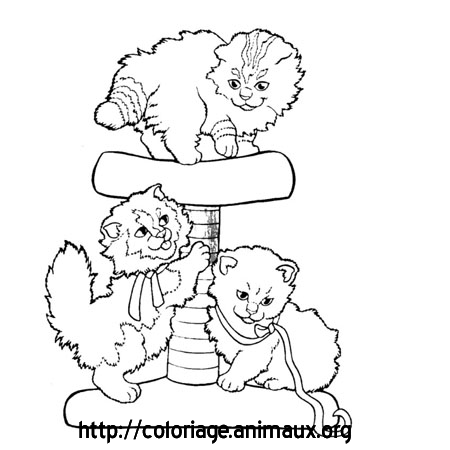 Chatons jouent coloriage chatons jouent sur coloriage animaux org - Dessin a colorier chat chaton ...