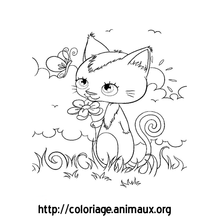 Coloriage Chat Debout.Chat Et Papillon Coloriage Chat Et Papillon Sur Coloriage Animaux Org
