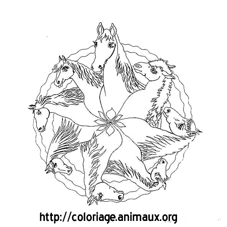 Coloriage cheval mandala