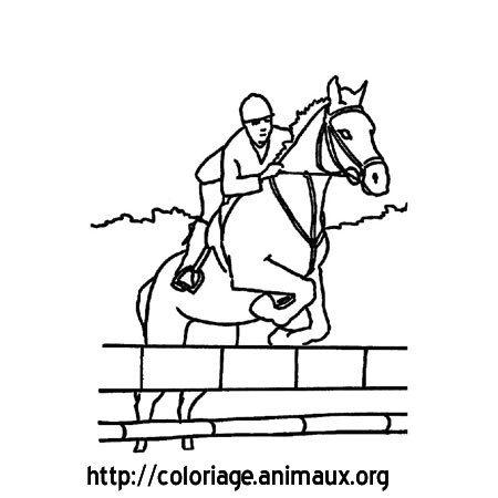 Coloriage cheval et obstacle