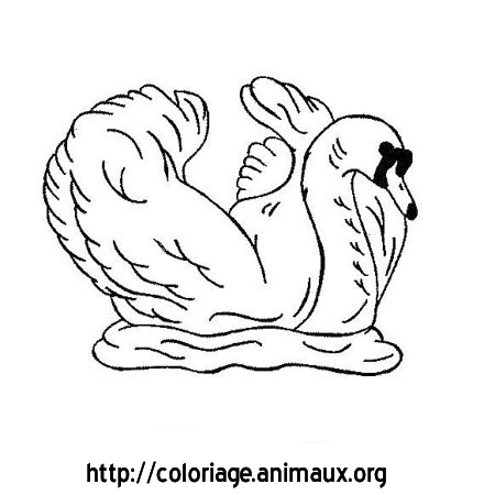 Cygne ailes relevees coloriage cygne ailes relevees sur - Coloriage cygne ...