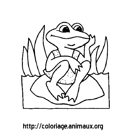 Coloriage grenouille assise