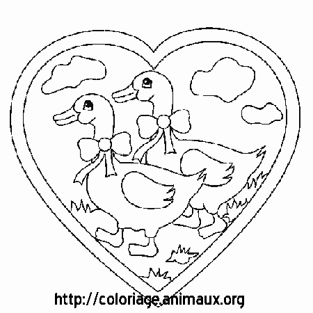 Coloriage oies amour