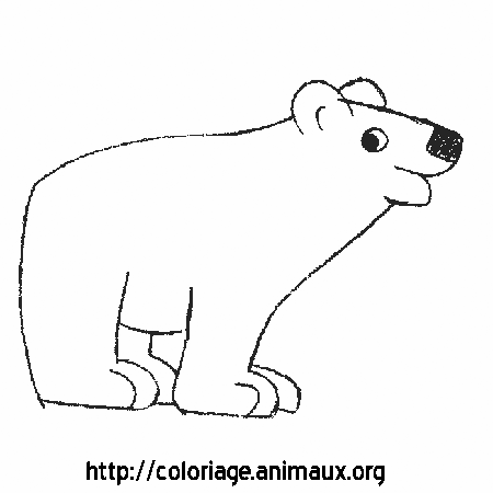Coloriage image ours