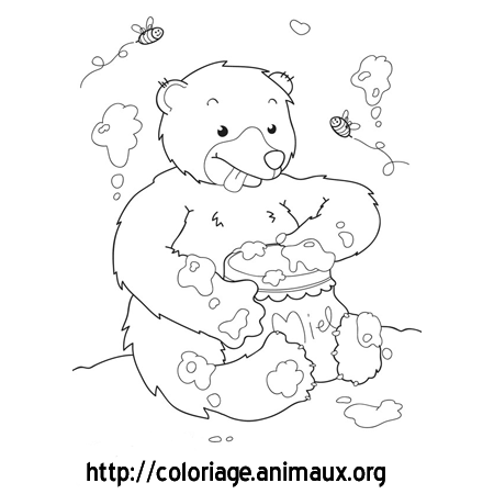Coloriage ours gourmand