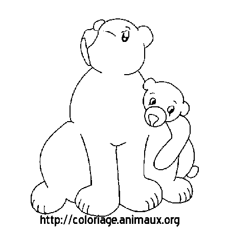Coloriage dessin ours