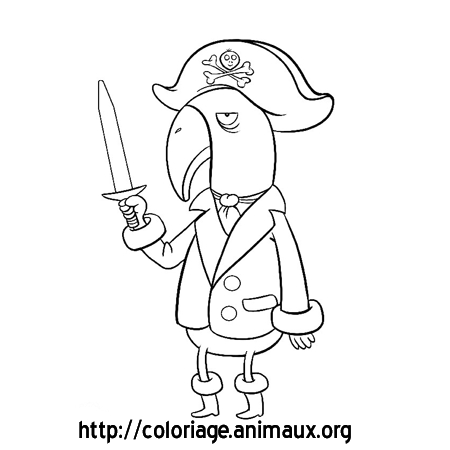 coloriage perroquet pirate et sabre
