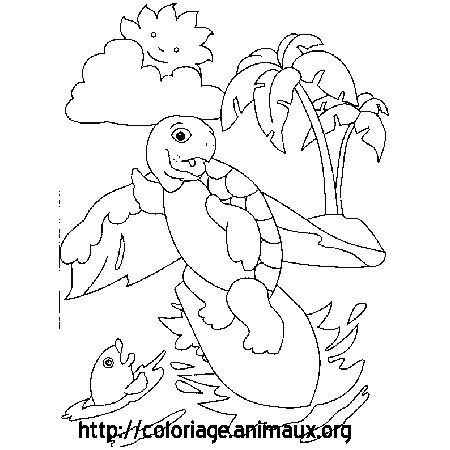 Coloriage tortue surf