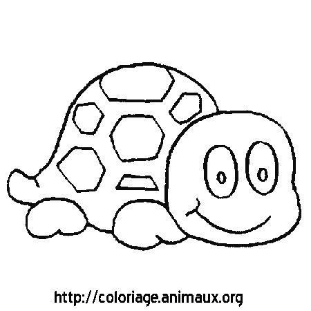 Coloriage tortue sourit